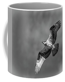 Coffee Mug featuring the photograph Osprey 2017-4 by Thomas Young