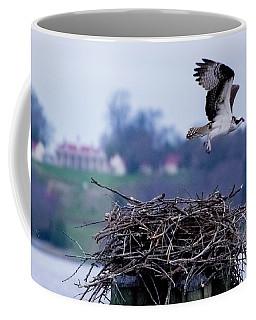 Osprey And Mount Vernon 2 Coffee Mug