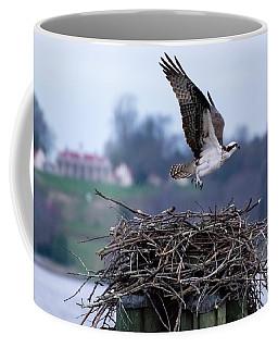 Osprey And Mount Vernon Coffee Mug