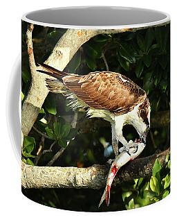 Osprey Dining Coffee Mug by Alan Lenk