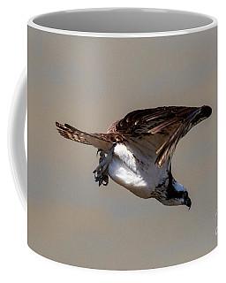 Osprey Dive Coffee Mug