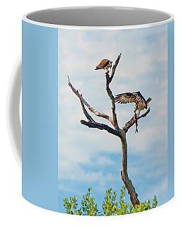 Osprey Feast Coffee Mug
