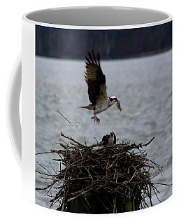 Osprey Feeding Coffee Mug