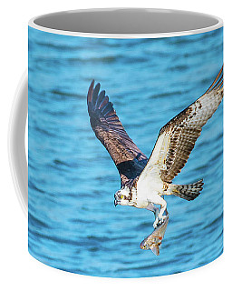 Osprey Fishing Success Coffee Mug