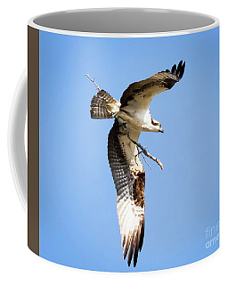 Osprey In Flight Coffee Mug