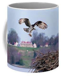 Osprey Landing Mount Vernon Coffee Mug