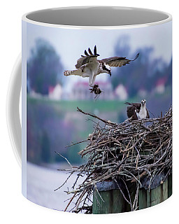 Osprey Nest Building Coffee Mug