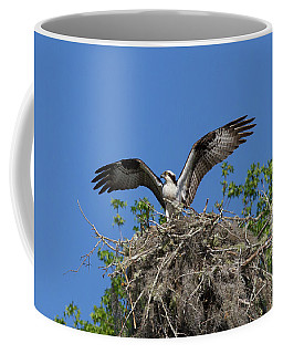 Osprey On Nest Wings Held High Coffee Mug