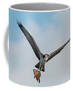 Osprey With Rainbow Bass 1 Coffee Mug