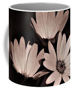 Osteospernum Photo  Coffee Mug