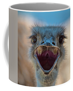 Coffee Mug featuring the photograph Ostrich Big Mouth by Dan McManus