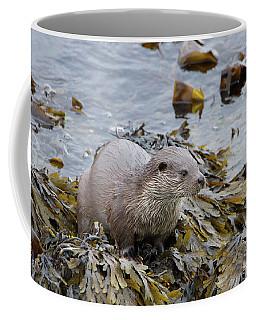 Otter On Seaweed Coffee Mug