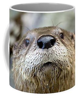 Otter Pop Coffee Mug