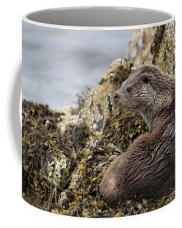 Otter Relaxing On Rocks Coffee Mug