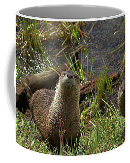 Otters Coffee Mug by Steve Stuller