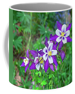 Our Gorgeous State Flower, Colorado Columbine  Coffee Mug