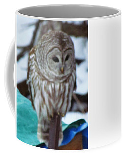 Coffee Mug featuring the photograph Our Own Owl by Betty Pieper
