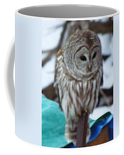 Our Own Owl Coffee Mug by Betty Pieper
