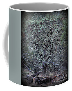 Out Of Africa     Not Coffee Mug