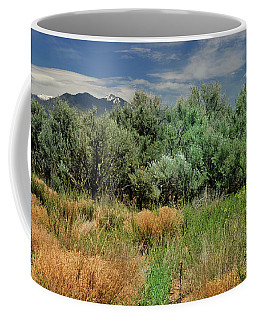 Coffee Mug featuring the photograph Out On The Mesa 1 by Ron Cline