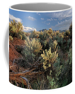 Coffee Mug featuring the photograph Out On The Mesa 7 by Ron Cline