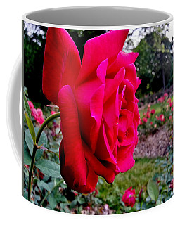Coffee Mug featuring the photograph Outstanding by Robert Knight