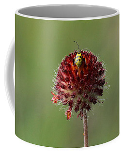 Over The Top Coffee Mug