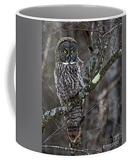 Over There- Great Gray Owl Coffee Mug