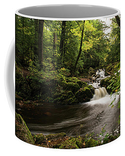 Overlooked Falls Coffee Mug
