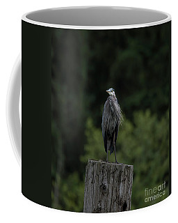 Overlooker  Coffee Mug