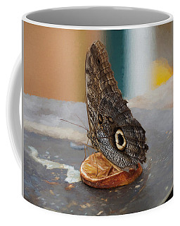 Coffee Mug featuring the photograph Owl Butterfly-1 by Paul Gulliver