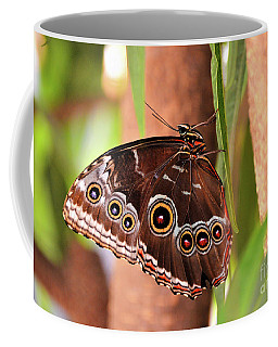 Owl Butterfly Coffee Mug
