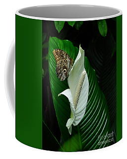 Owl Butterfly On Calla Lily Coffee Mug by Elaine Manley