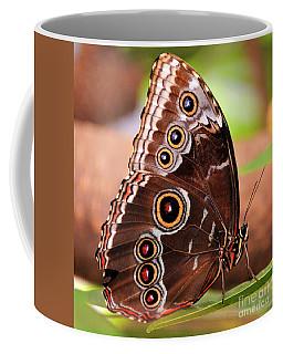Owl Butterfly Portrait Coffee Mug