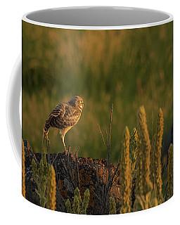 Owl Dancing At Dusk Coffee Mug