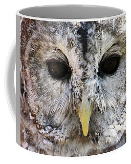 Owl Eyes Coffee Mug