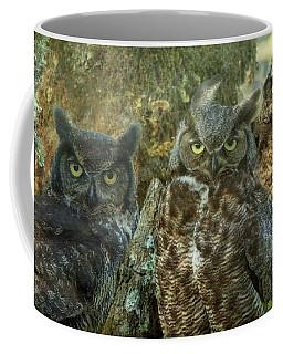 Owl Family Coffee Mug