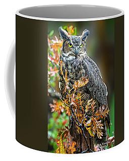 Owl In Autumn Oaks Coffee Mug