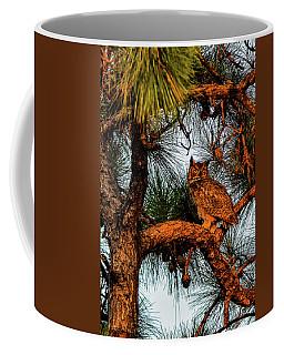 Owl In The Very Last Sunset Light Coffee Mug