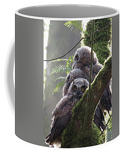 Owl Morning Coffee Mug