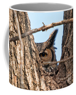 Owl Peek Coffee Mug by Steve Stuller