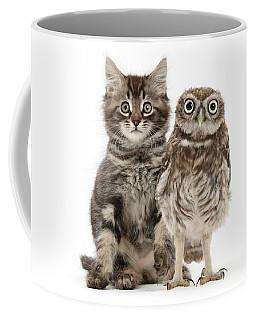 Owling And Yowling Coffee Mug