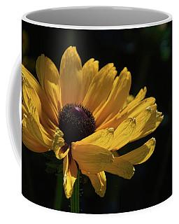 Ox Eye Susan Coffee Mug