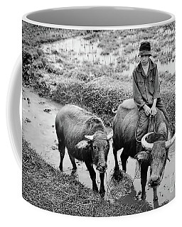 Coffee Mug featuring the photograph Oxen Day Off.cambodia Bw by Jennie Breeze