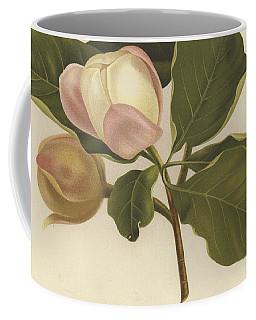Oyama Magnolia Coffee Mug