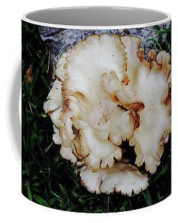 Oyster Mushroom Coffee Mug