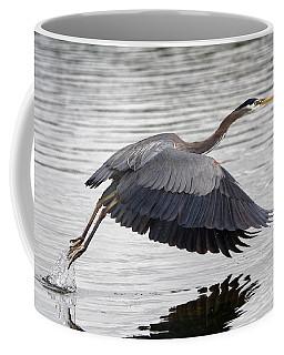 Pacific Great Blue Heron On Lift Off Coffee Mug