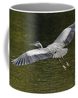 Pacific Great Blue Heron On The Fly Coffee Mug