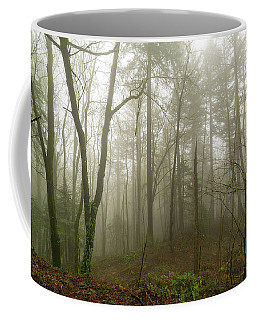 Pacific Northwest Foggy Morning Forest Scene Coffee Mug