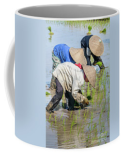 Paddy Field 2 Coffee Mug by Werner Padarin